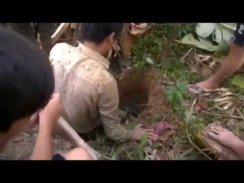 Câu cá lóc khủng nhất Việt Nam