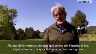 Entrevista a Josep Mestre, pagès ecològic