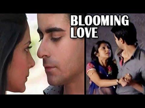 Saras & Kumud's BLOOMING LOVE in Saraswatichandra 3rd April 2013