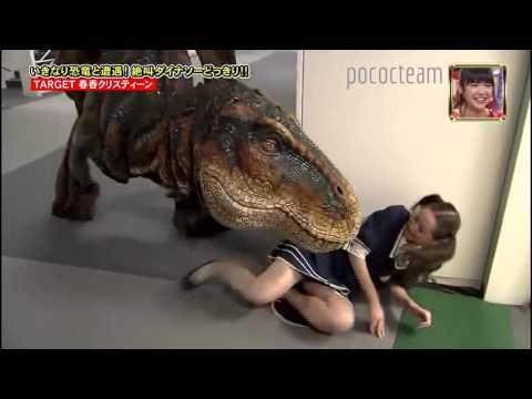 broma Japonesa, dinosaurio Tiranosaurio Rex