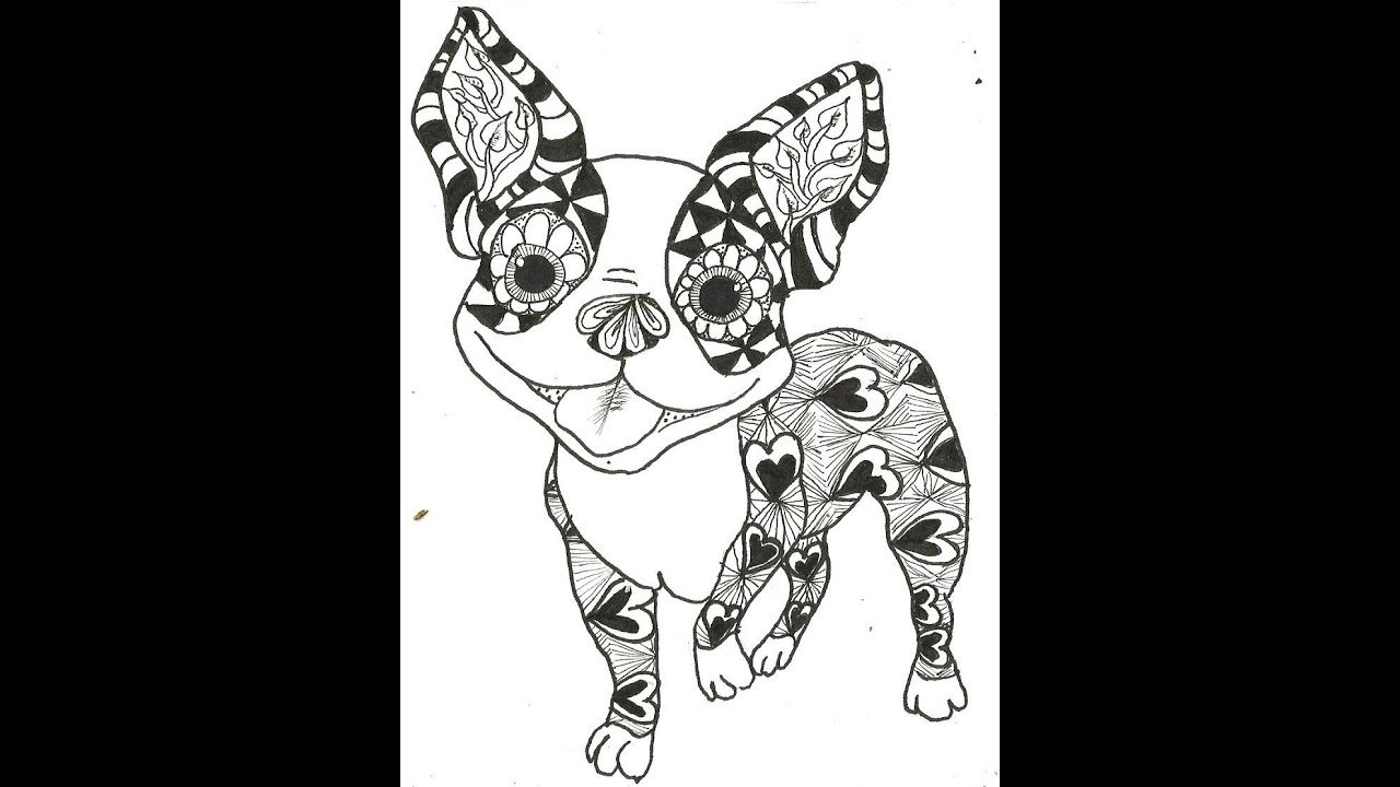 boston terrier colouring pages (page 2)