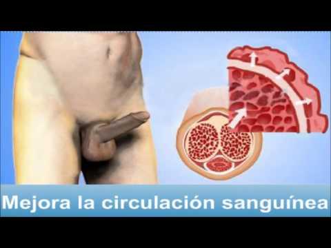 El aumento del miembro es quirúrgico volgograd