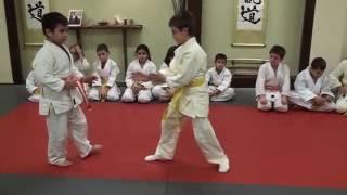 Aikido Training Center Children' S Class Demonstration