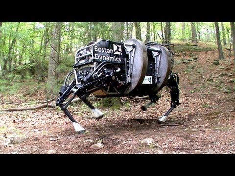 حصان المستقبل