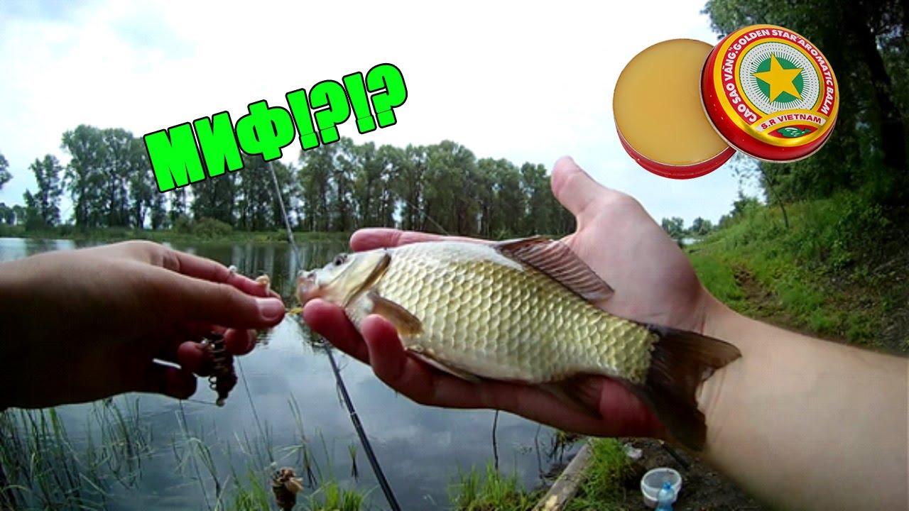 рыбалка на манку летом