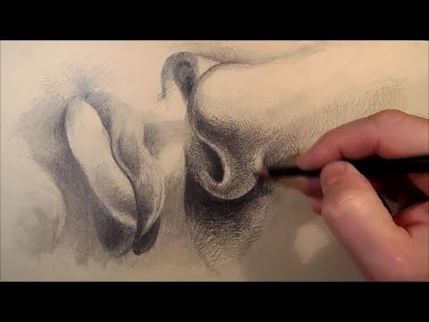 How to draw Mouth and Nose