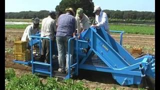 EUROPA K600 Potatoes Digger Rome 2009