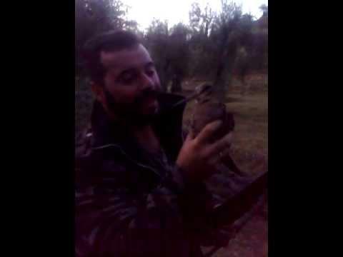 Σπύρος & Χρήστος Κυνήγι Μπεκάτσας (Κέρκυρα) 1