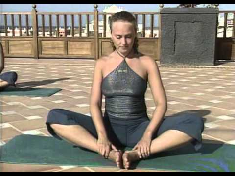 Yoga - The Essential part 2