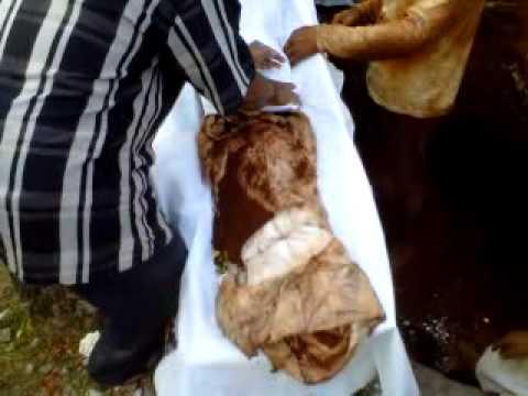 Jasad utuh dan wangi Siti Masrinah di Tuban setelah 19 tahun dikuburkan karena semasa hidup dia gemar bersedekah, berzikir, bersholawat, baca Al-Quran, sholat tahajud, ikhlas memaafkan orang lain dan saling mengingatkan dalam kebaikan