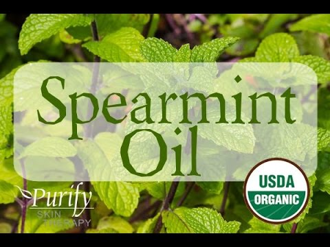 Spearmint Essential Oil ~ All You Ever Need to Know