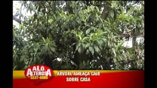 Jornal da Alterosa 1� edi��o - 28/11/2014