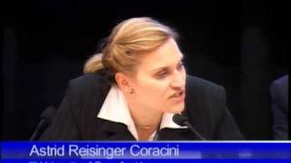 The International Criminal Court and the Crime of Aggression - Panel 4