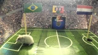 Final - La predicción del Ratón Mundialista: Brasil - Holanda Mundial Brasil 2014