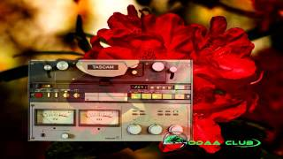 "Ali Shabbo - Sodaa Namaa Lakkisi ""ሶዳ ነማ ለኪሲ"" (Oromiffa)"