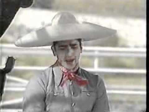 Necesito Olvidarla - Alejandro Fernández