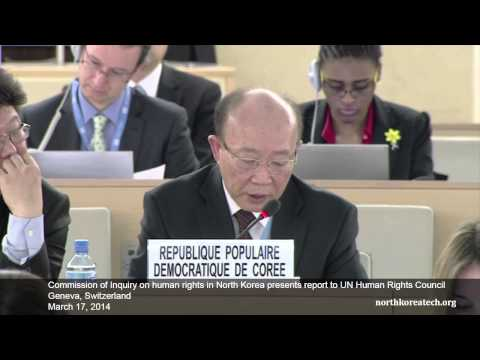 UN Human Rights panel presents North Korea report