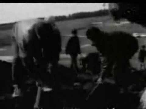 Vajzat e dhunaura në Kosovë - Rrefimet e femrave të dhunuara gjatë luftës në Kosovës.