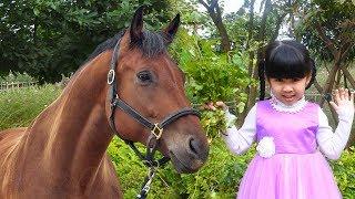 Trò Chơi Cho Ngựa Ăn Cỏ, Con Dê và Con Thỏ Ăn Cỏ ♥ Bé Bún – Bé Bắp ♥