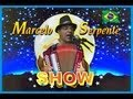 MUSICA  LUA COR DE PRATA  MARCELO SERPENTE  FORRO SERTANEJO