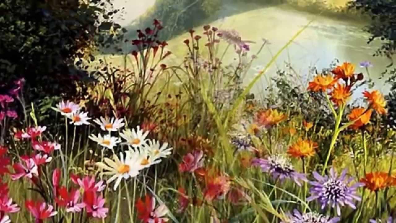 Фото пейзажи с полевыми цветами