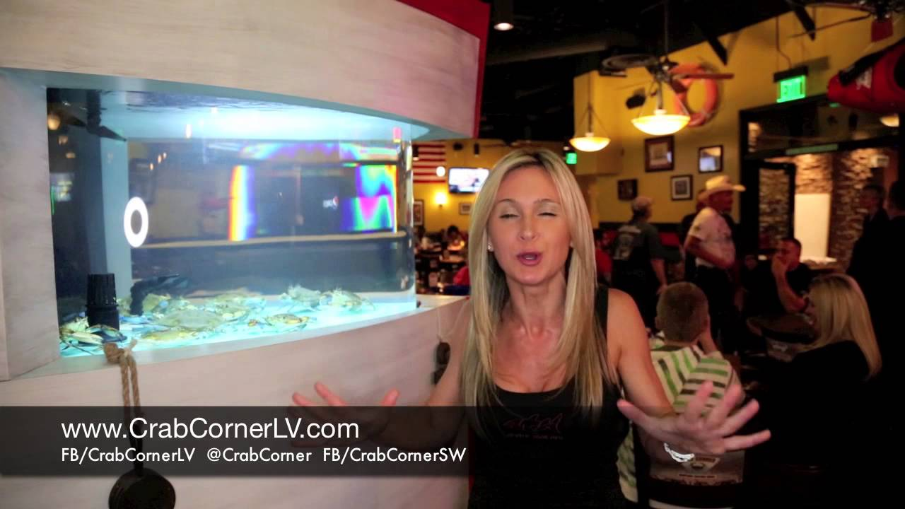 Why Agnes Wilczynski of Animal Planets Tanked Love Crab