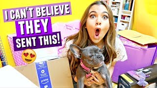 HUGE SURPRISE HAUL!! I didn't know Tarte would send this...