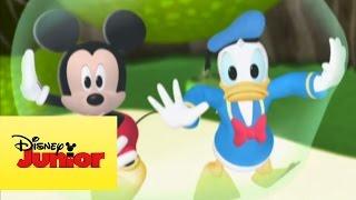A Casa Do Mickey Mouse: Mickey No País Das Maravilhas