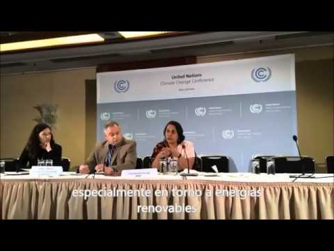 Tasneem Essop from WWF outlines NGO demands for climate action (UN climate talks in-Bonn, June 2014)