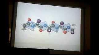 Segunda clase bioquímica. Parte 3. Proteínas