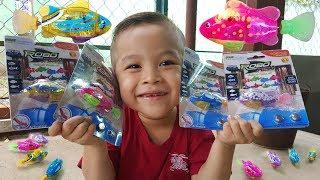 Đồ Chơi Con Cá Robo – Fish Robot Toys ❤ ChiChi ToysReview TV ❤ Kids Baby Doli