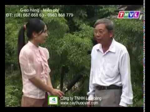 Cây Đinh Lăng - Cây Thuốc Nam