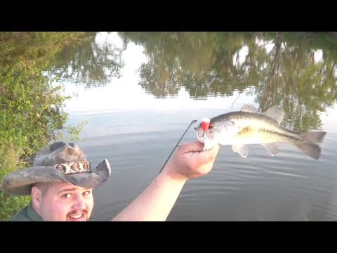 TGO Survival Fishing WITHOUT BAIT!