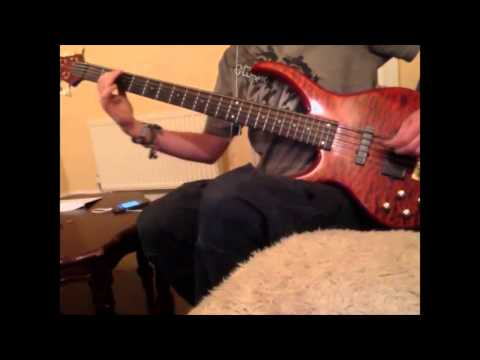 Flossing a dead horse - NOFX (Bass cover)