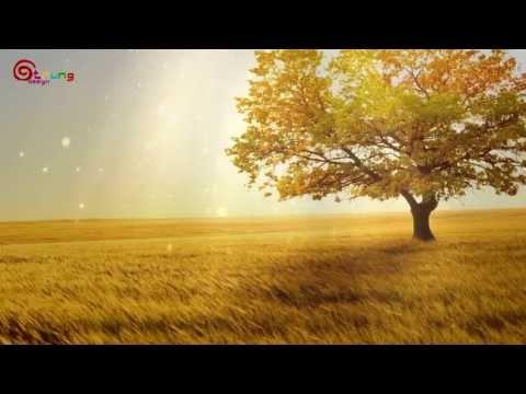 Vệt Nắng Cuối Trời - Tiến Minh | Lyric + HD