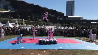 2018 국기원 태권도 시범단 호주 파견