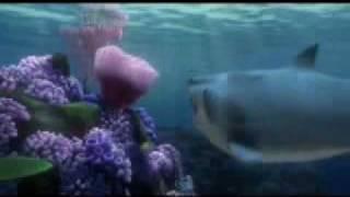 Shark Tickle