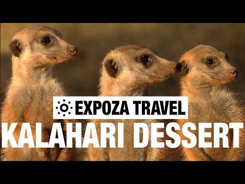 Kalahari Desert Travel Guide