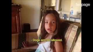 """We're leaving the dog behind to go on holiday"": children's reactions"