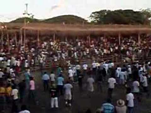 Monta de Toros en albarda, Liberia 2008