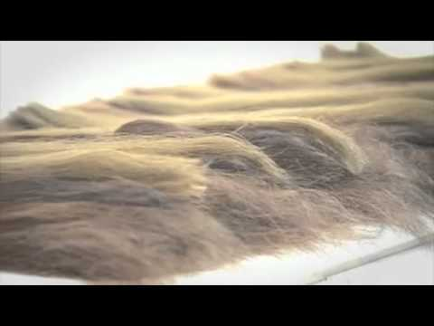 Great Lengths Hair Extensions Showcase