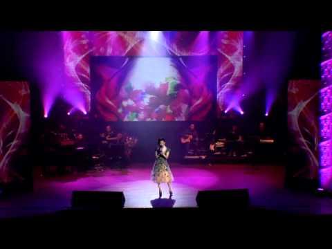 Live Show Le Quyen 2012 Disk1 DVDRIP AC3 x264 TRiM