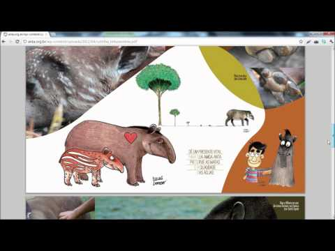 Dia Mundial da Anta: 27 de abril (isso n�o � uma piada)