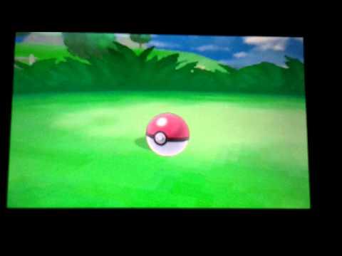 Saquedeneu shiny ( 655 resets pokemon y )