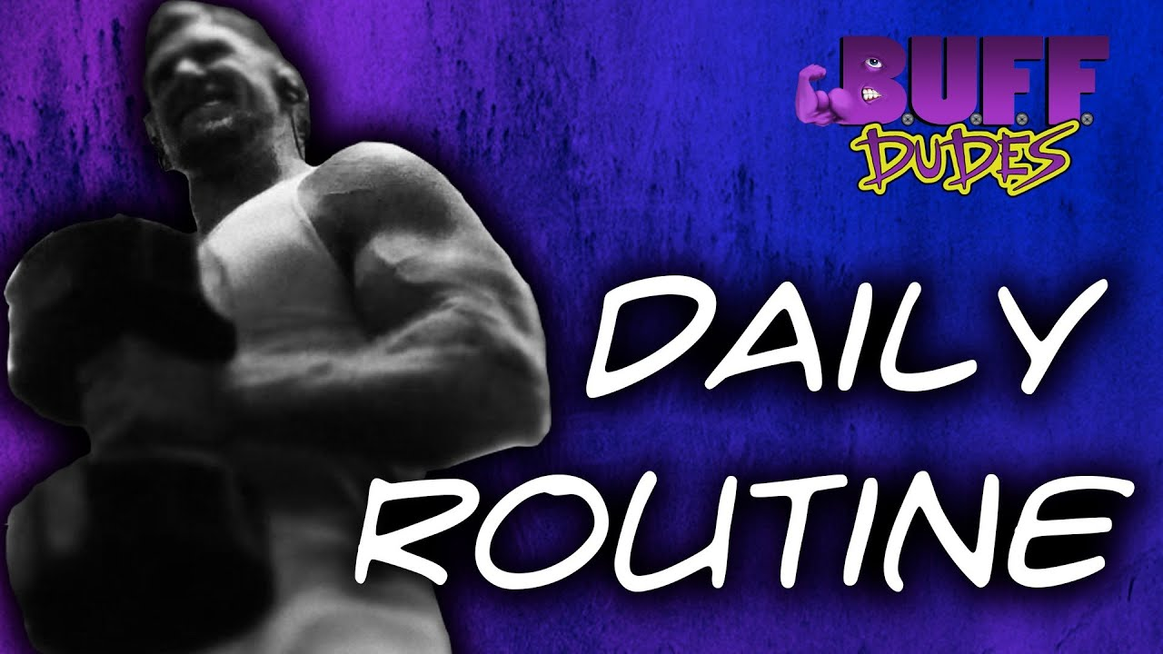 Daily Routine exercise 1 nr1591  YouTube