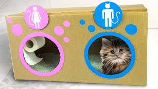 DIY Cat Toilet | Craft Ideas for Kids on Box Yourself