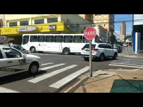 Vídeo Ônibus tem pane na avenida São Carlos