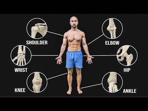 The BEST Mobility Exercises For Each Joint!