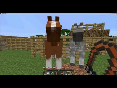 Horse mods for Minecraft - Apps on Google Play