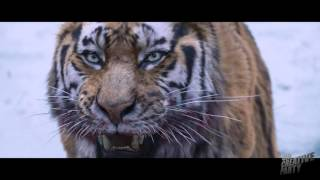 The Tiger's VFX reel HD (4th Creative Party)